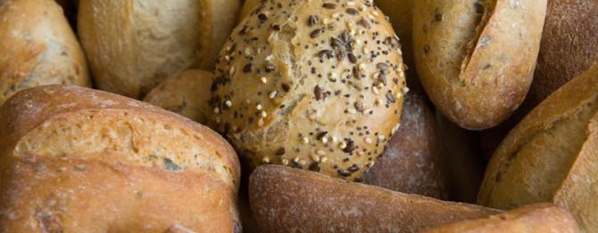 Pandelino-bakery20
