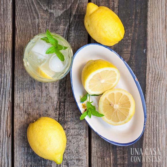 limonada_casera_03