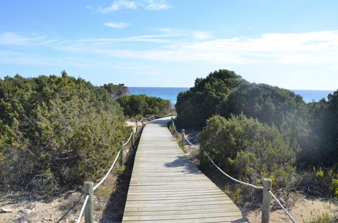 playa del mitgorn